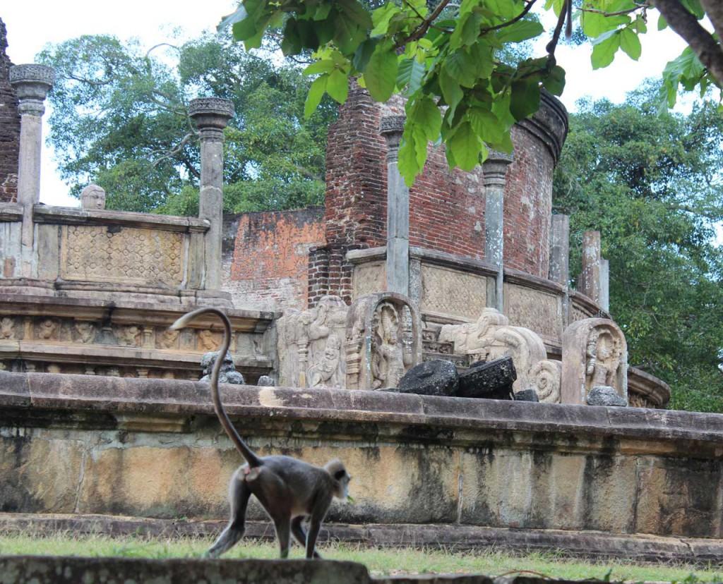 polonnaruwa_8